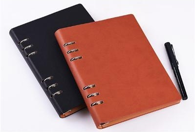 Personalized diary book